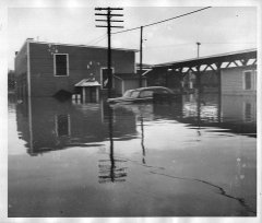 lynn-camp-creek-flood-1957-128.jpg