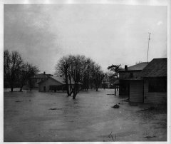 lynn-camp-creek-flood-1957-136.jpg